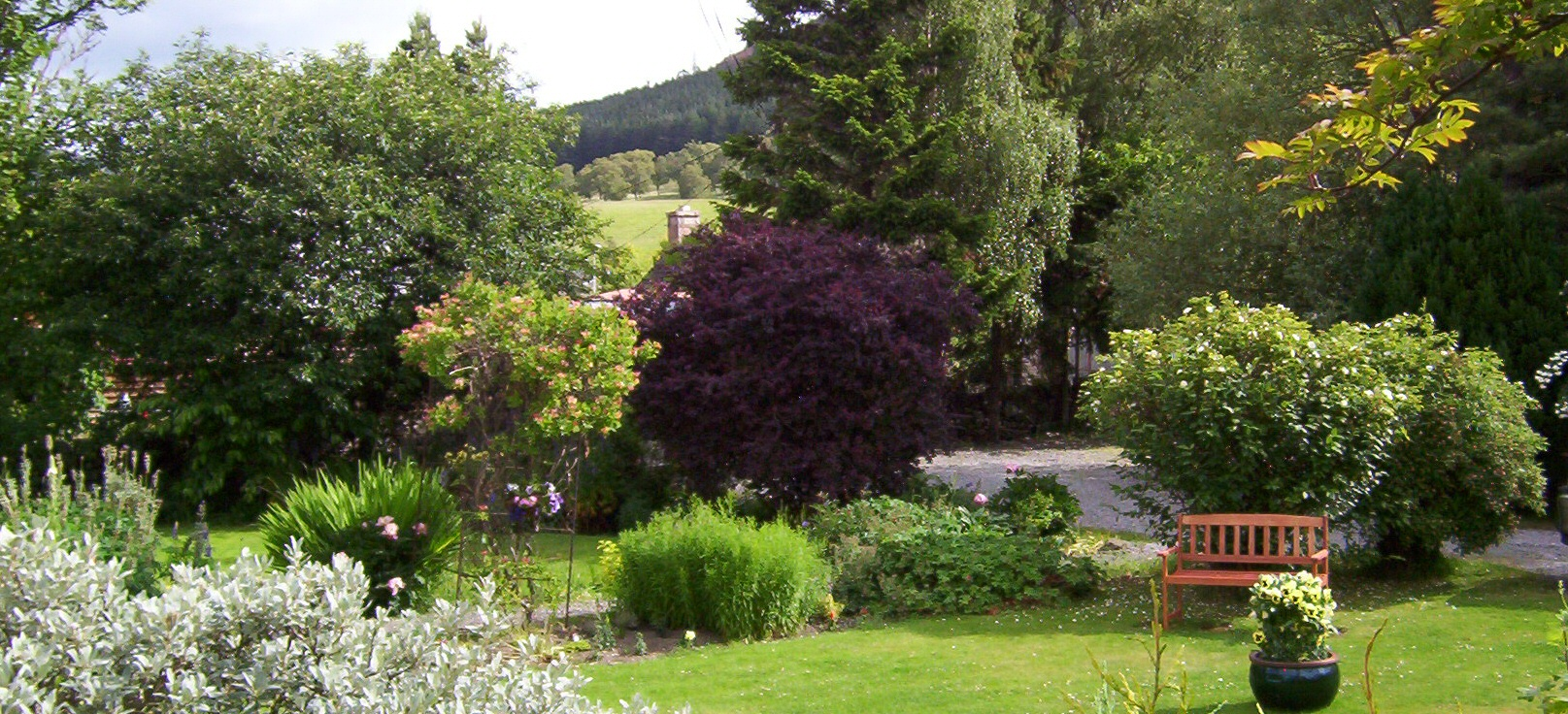 <h2>Craiglea Bed and Breakfast  - Braemar</h2><div class='slide-content'></div>